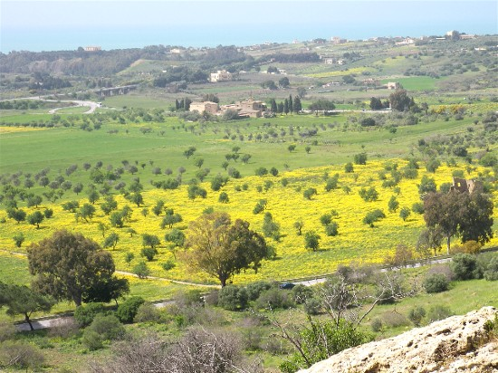 The view from the Temples at Agrigento, on the southern coast of Sicily.