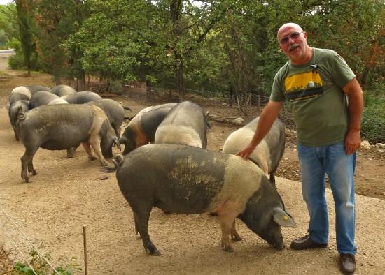Daniele Baruffaldi proudly shows off his heritage breed hogs.