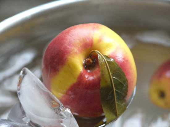 A Bechtold's Orchard peach emerging from a refresing ice water bath.
