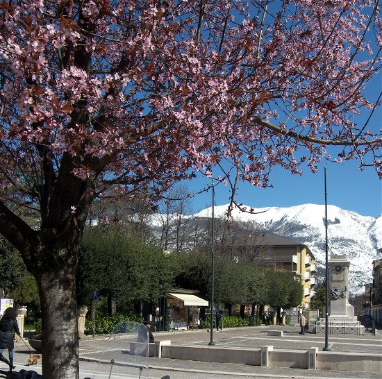 Spring blooms frame dramatic snow-capped mountains in Sulmona.