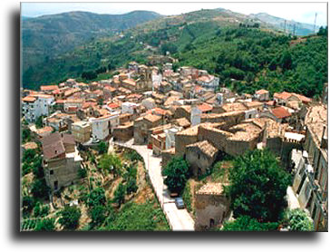 Santisi oil is produced in Motta d'Affermo on the northern coast of Sicily about 24 miles east of  Cefalù.